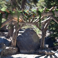 005 twin lakes forest chapel 200x200 Wedding Venue | Twin Lakes Forest Chapel   Mammoth Lakes, CA