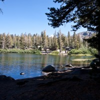 011 twin lakes forest chapel 200x200 Wedding Venue | Twin Lakes Forest Chapel   Mammoth Lakes, CA
